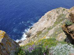 L'île de Berder et le courant de la jument