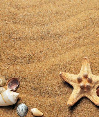 Les dangers de la plage : ce qu'il ne faut pas faire
